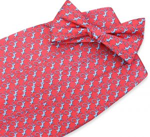 Monkey Business: Cummerbund - Coral