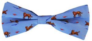 Lab Partners: Boy's Bow - Blue