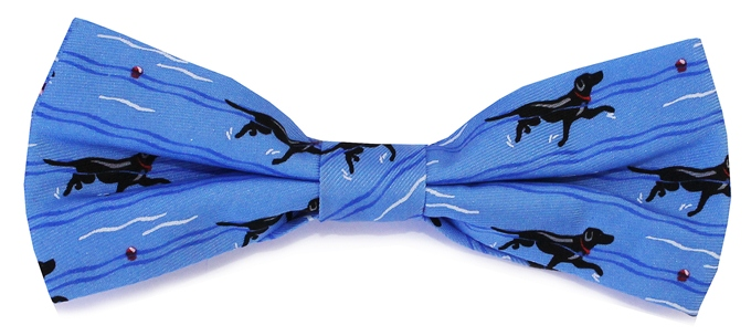Doggy Paddle: Boy's Bow - Blue