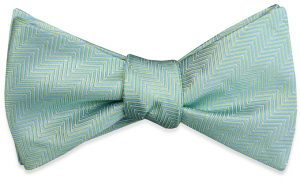 Ziggy Zag: Bow - Green/Blue