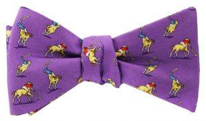 Polo Match: Bow - Purple