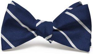 Shipley Stripe: Bow - Navy/White