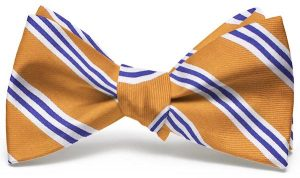 On Air Stripe: Bow - Orange/Blue