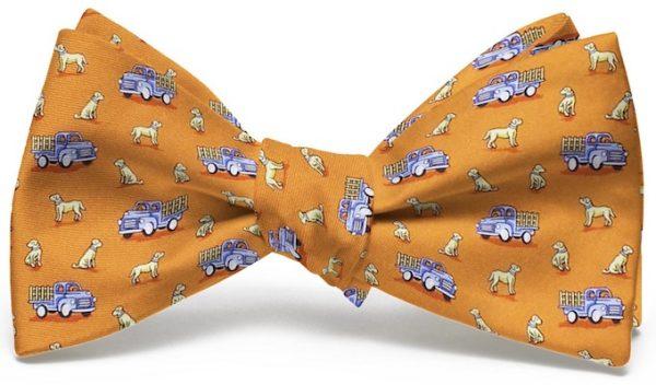 Dogs Love Trucks: Boy's Bow - Orange