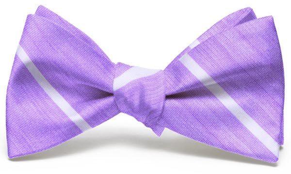 A Thin White Line: Bow - Violet/White