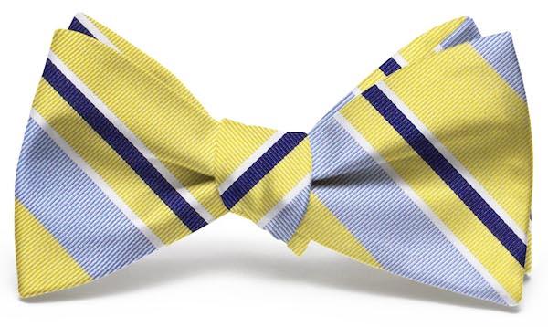 Wayfair Stripe: Bow - Yellow/Blue