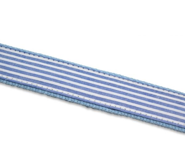Mulligan: Embroidered Belt - Light Blue