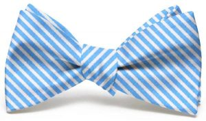 Chapman Stripe: Bow - Light Blue