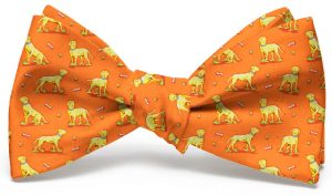 Lucky Labs: Bow - Orange