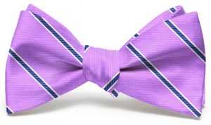 Boardroom Stripe: Bow - Violet