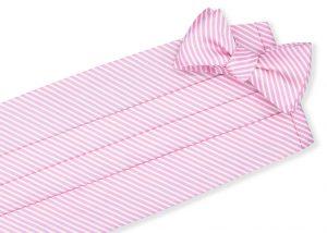 Chapman Stripe: Cummerbund - Pink