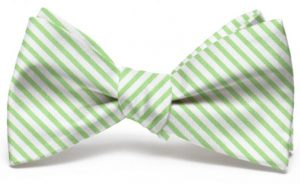 Signature Stripe: Bow - Green