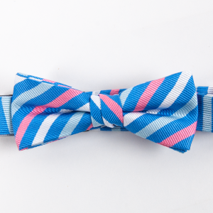 Eastwood: Boys Bow Tie - Blue/Pink