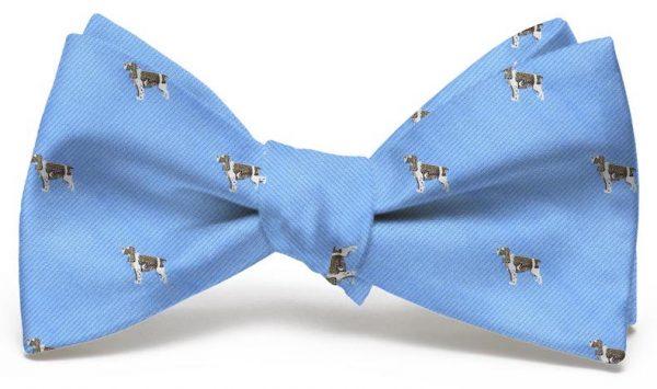 Springer Spaniel Club: Bow - Light Blue