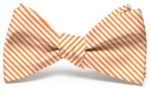 Signature Stripe: Bow - Orange