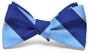 Benthaven: Bow - Light Blue/Navy