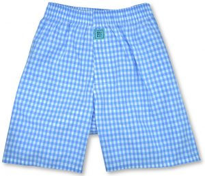 Gingham: Boxers - Light Blue