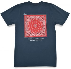 In Case of Emergency: Short Sleeve T-Shirt -Steel Blue