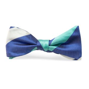 Craig: Bow Tie - Royal Blue