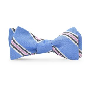 Rockport: Bow Tie - Blue/Pink