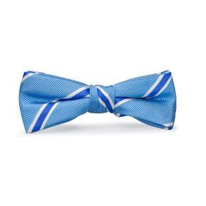 James: Boys Bow Tie - Blue