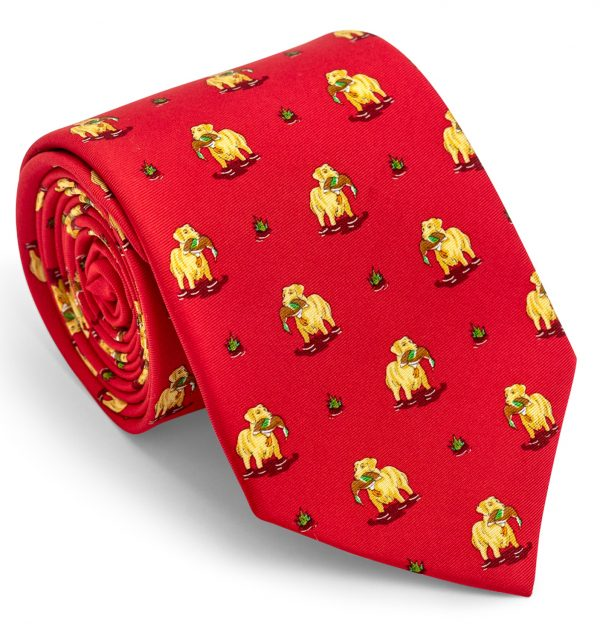 Duck Dogs: Tie - Red with Yellow