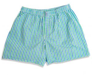 Gingham: Boxers - Green/Blue