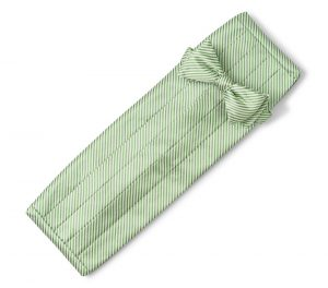 Signature Stripe: Cummerbund Set - Green